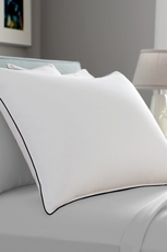 Pacific Coast Feather Double Down Around King Pillow in White