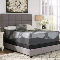 Queen Ashley Sierra Sleep 14 Inch Hybrid 1400 Ultra Plush Bed in a Box