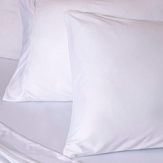 Bedgear Dri-Tec White Queen Pillowcase Set