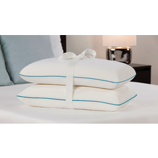 Molded Memory Foam Bed Pillow Twin Pack by Comfort Revolution