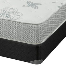 Twin XL Corsicana Harmony 8517 Elated Plush Mattress