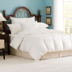 Downright Andesia Winter Comforter