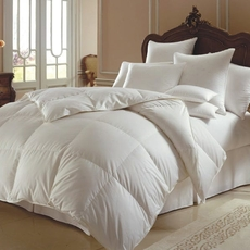 Downright Himalaya Polish Winter Comforter