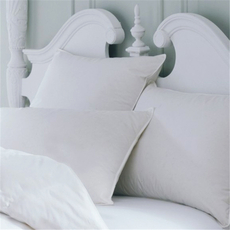 Downright All Cotton Queen Pillow Protector