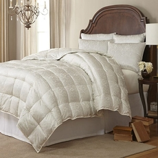 Downright Eliasa Eiderdown Winter Oversized King Comforter in Ecru