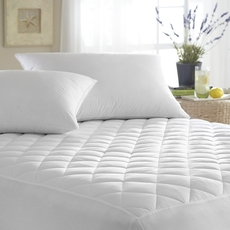 Downright Organic Euro Pillow Protector
