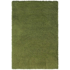 Oriental Weavers Loft Collection 520G Shag Green and Green Area Rug
