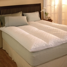 Pacific Coast Feather Euro Rest California King Feather Bed in White
