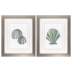 Propac Grafitti Shell II Wall Art Set of 2