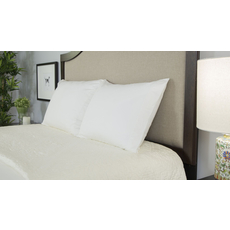 Protect-A-Bed Naturals Luxury Queen Pillow Protector