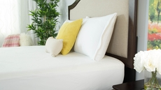 Protect-A-Bed Naturals Signature Standard Pillow Protector