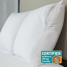Protect-A-Bed Originals AllerZip Standard Pillow Protector