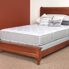 Restonic Comfort Care Select Bristol Double Sided Plush 14 Inch Twin Mattress Only OVML022006