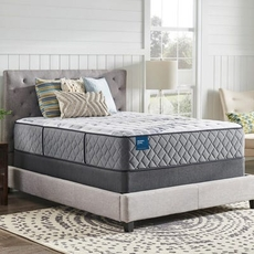 Queen Sealy Crown Jewel Performance Brittania Silver Plush 15.5 Inch Mattress