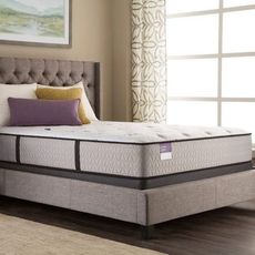 Twin Sealy Crown Jewel Performance Inspirational Precision Cushion Firm Mattress