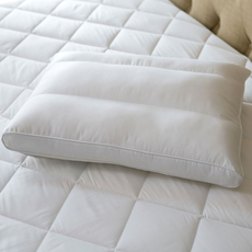 Sealy Posturepedic PostureFit Back Pillow by DOWNLITE