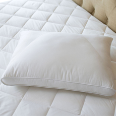 Sealy Posturepedic Down Side Pillow by DOWNLITE