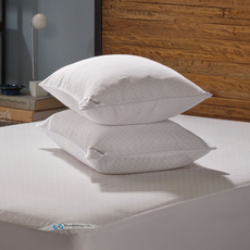 Sealy Posturepedic Allergy Protection Pillow Encasement 2 Pack by American Textile