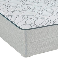Sealy Seward Plush Queen Mattress OVML0318132