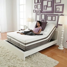 Clearance Sealy Reflexion Queen Power Base SDMH012110