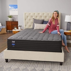 Queen Sealy Response Performance Alder Avenue Plush Mattress