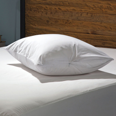 Sealy Stain Protection Pillow Encasement 2 Pack by American Textile