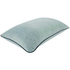 Simmons Beautyrest Complete Absolute Rest Queen Pillow