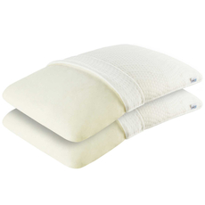 Beautyrest Recharge Pillow Set