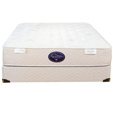 Full Spring Air Back Supporter Perfect Balance Alexis Firm Mattress
