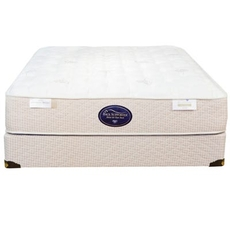 Queen Spring Air Back Supporter Perfect Balance Alexis Firm Mattress
