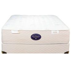 Queen Spring Air Back Supporter Perfect Balance Angelica Firm Mattress