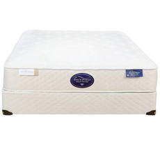 Queen Spring Air Back Supporter Latex Aristocrat Firm 13 Inch Mattress