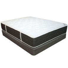 Full Spring Air Four Seasons Back Supporter Spring Dreams Double Sided Plush Mattress