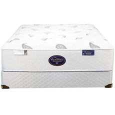 Cal King Spring Air Back Supporter Platinum Onyx Plush Mattress