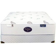Queen Spring Air Back Supporter Platinum Onyx Plush Mattress