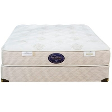 Queen Spring Air Back Supporter Perfect Balance Savannah Firm Mattress