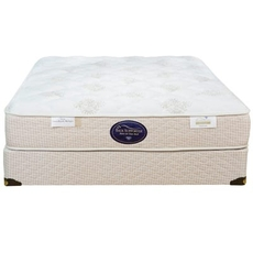 Queen Spring Air Back Supporter Perfect Balance Savannah Plush 11 Inch Mattress