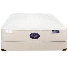 Twin Spring Air Back Supporter Latex Simplicity Plush 14 Inch Mattress
