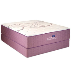 Queen Spring Air Sleep Sense Hybrid Plus Level III Plush Mattress