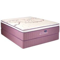 Queen Spring Air Sleep Sense Hybrid Plus Level IV Luxury Firm Euro Top Mattress