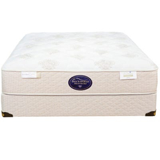 Full Spring Air Back Supporter Perfect Balance Sophia Plush Mattress