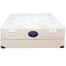 Queen Spring Air Back Supporter Perfect Balance Sophia Plush 12 Inch Mattress