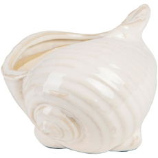 Surya Clearwater 4 Inch Shell in Ivory