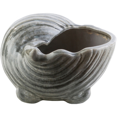 Surya Clearwater 5.5 Inch Shell in Charcoal
