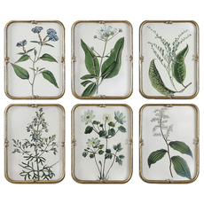Uttermost Blue Floral Art Collection Set of 6
