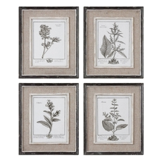 Uttermost Casual Grey Study Framed Art Set of 4
