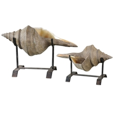 Uttermost Conch Shell Sculpture Set of 2