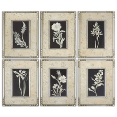 Uttermost Glowing Florals Framed Art Set of 6