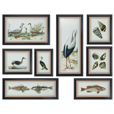Uttermost Seashore Collage Prints Set of 8